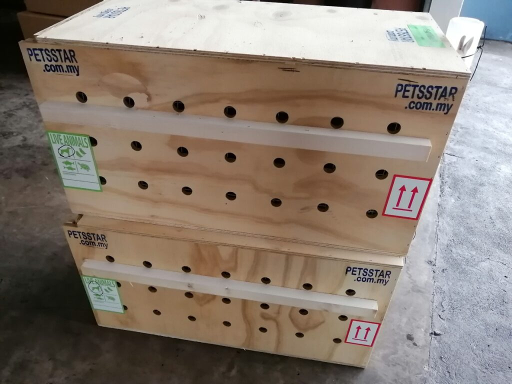 wallaby-export-crate